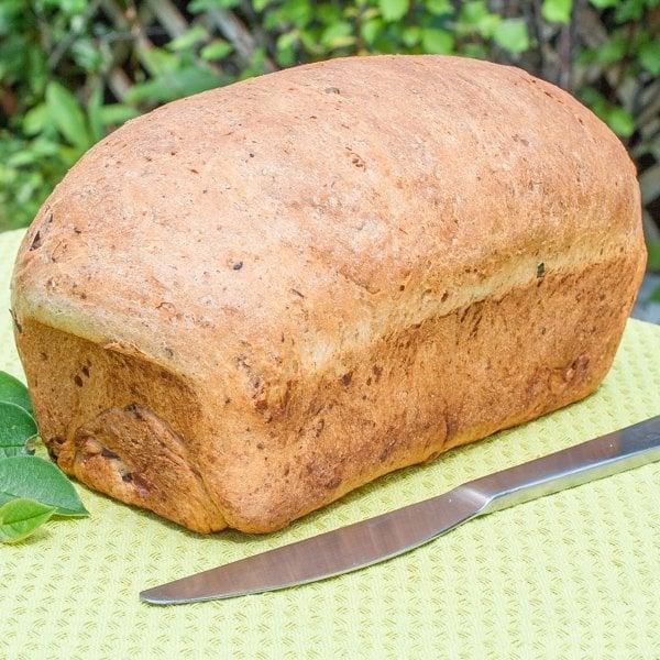 Olive Cheddar Bread