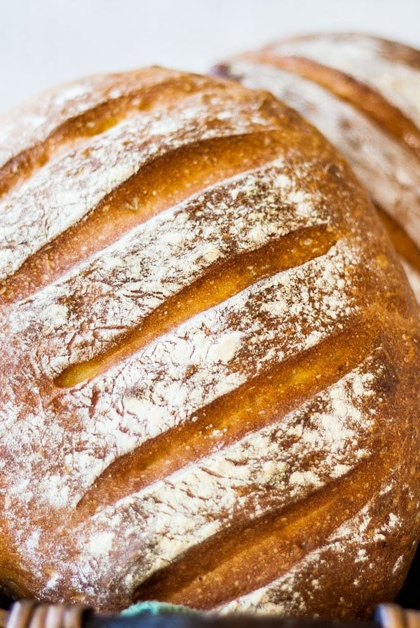 close up shot of artisan bread loafs
