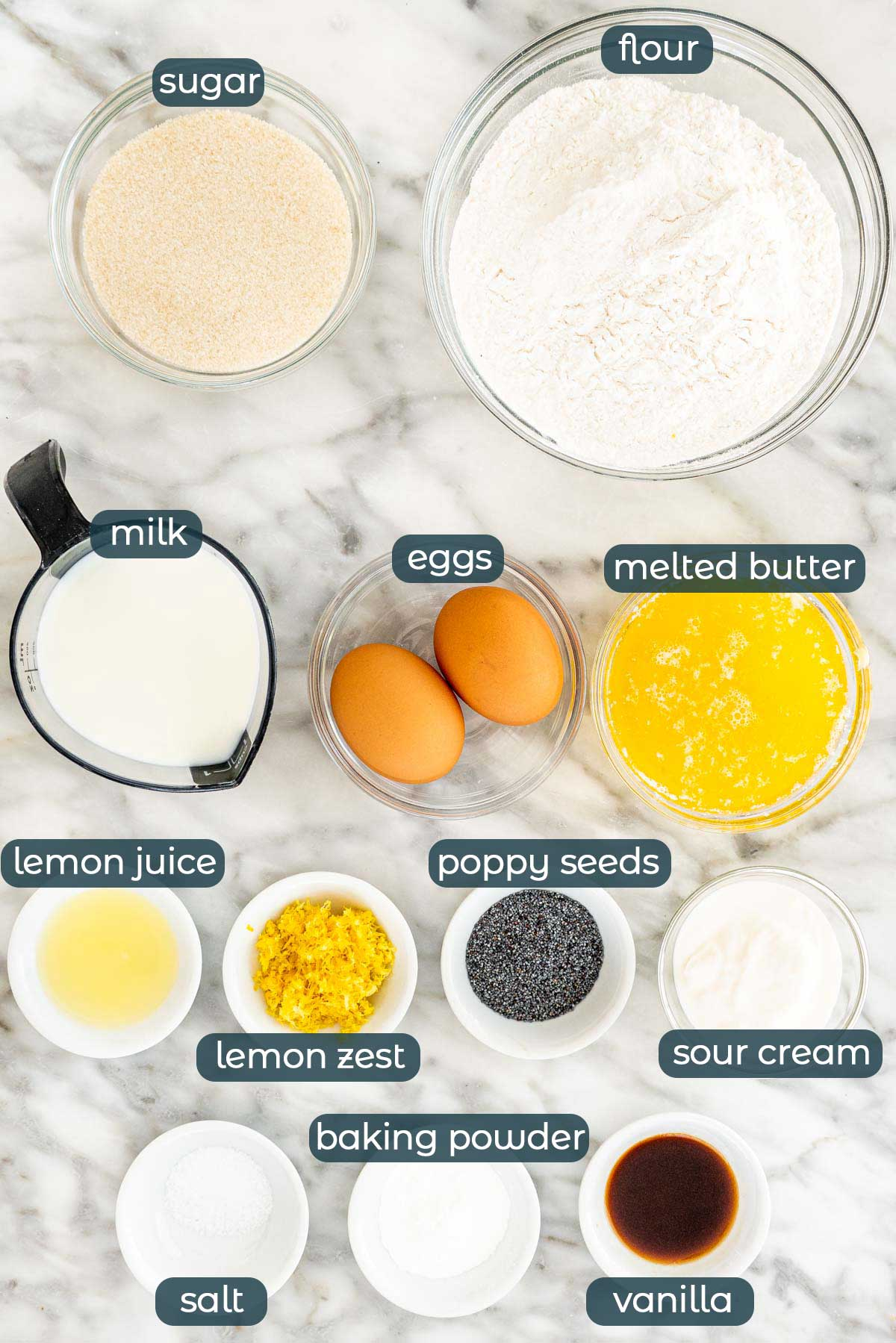 overhead shot of all ingredients needed to make lemon poppy seed muffins