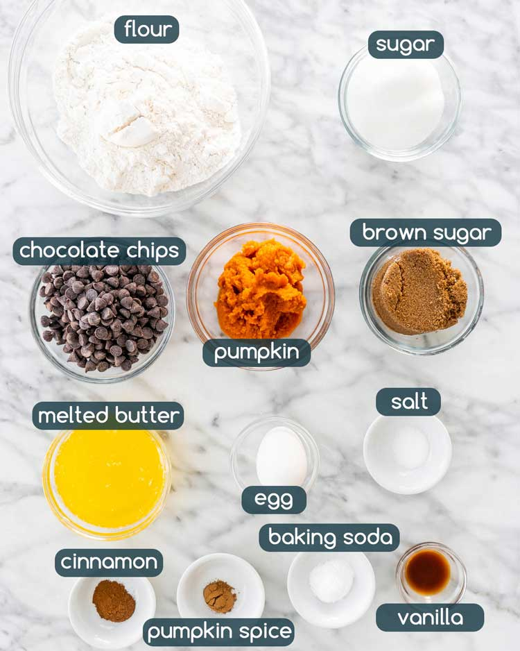 overhead shot of all the ingredients needed to make Pumpkin Chocolate Chip Cookies