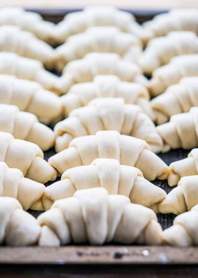 a tray of freshly rolls crescents ready to go into the oven