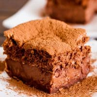 close up shot of a piece of chocolate magic cake