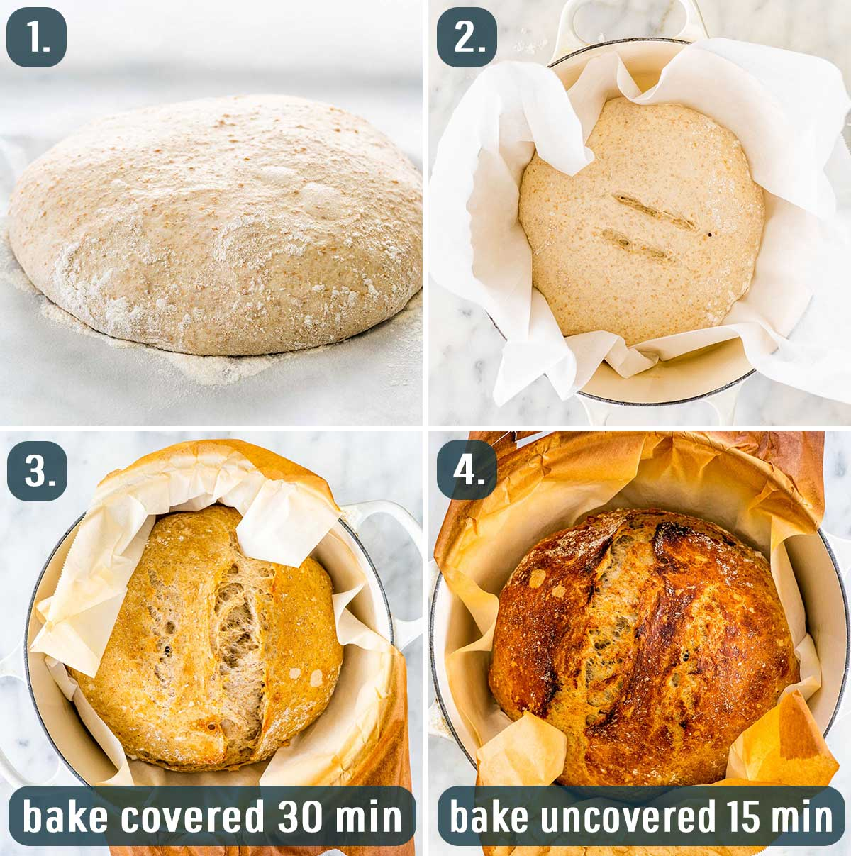 process shots showing how to bake no knead whole wheat bread.