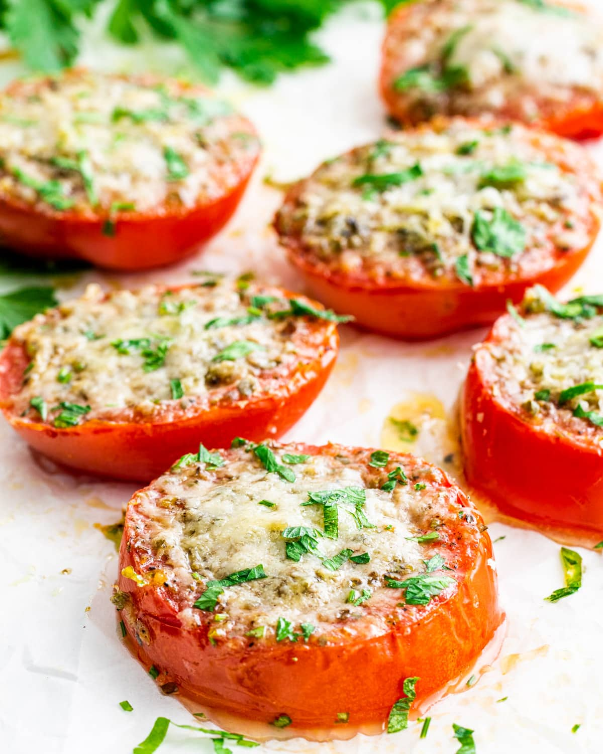 side view shot of 6 slices of baked parmesan tomatoes garnished with parsley