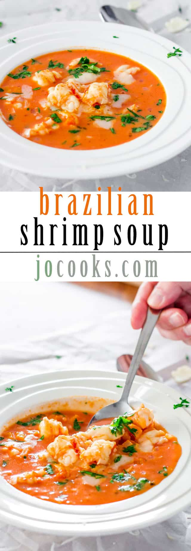 brazilian-shrimp-soup-collage