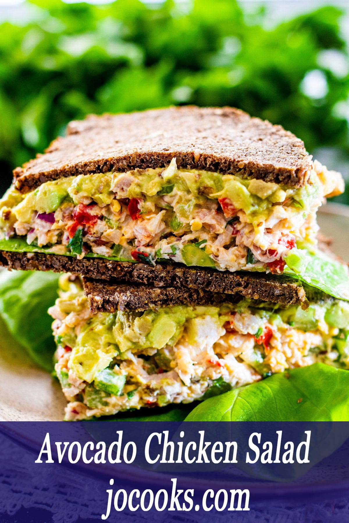 Avocado Chicken Salad sandwiches with dark bread