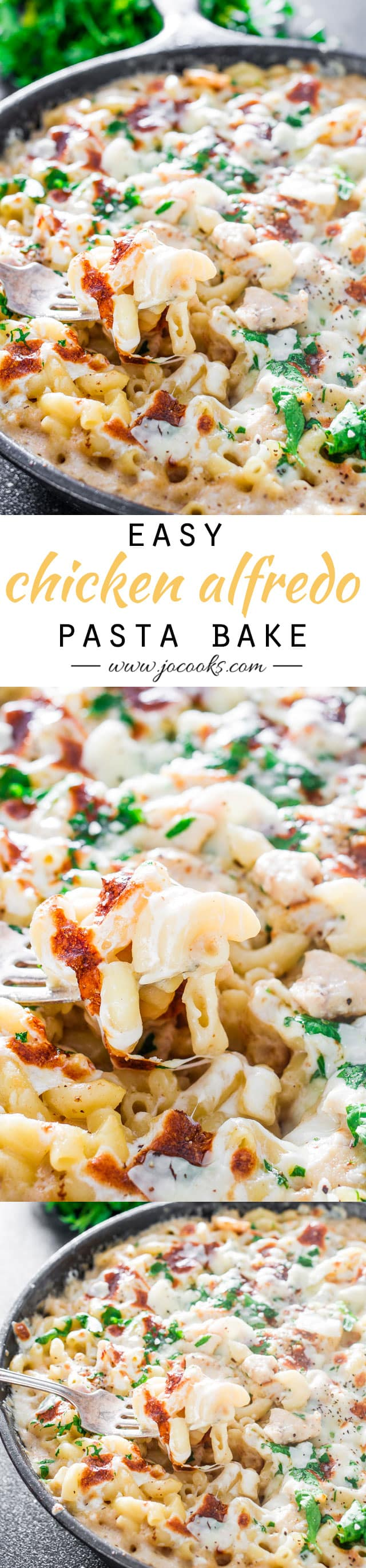 Easy Chicken Alfredo Pasta Bake - A simple, no-fuss dinner that you can easily make right at home with very few ingredients.