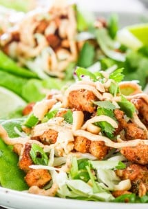 Jamaican Jerk Chicken Lettuce Wraps
