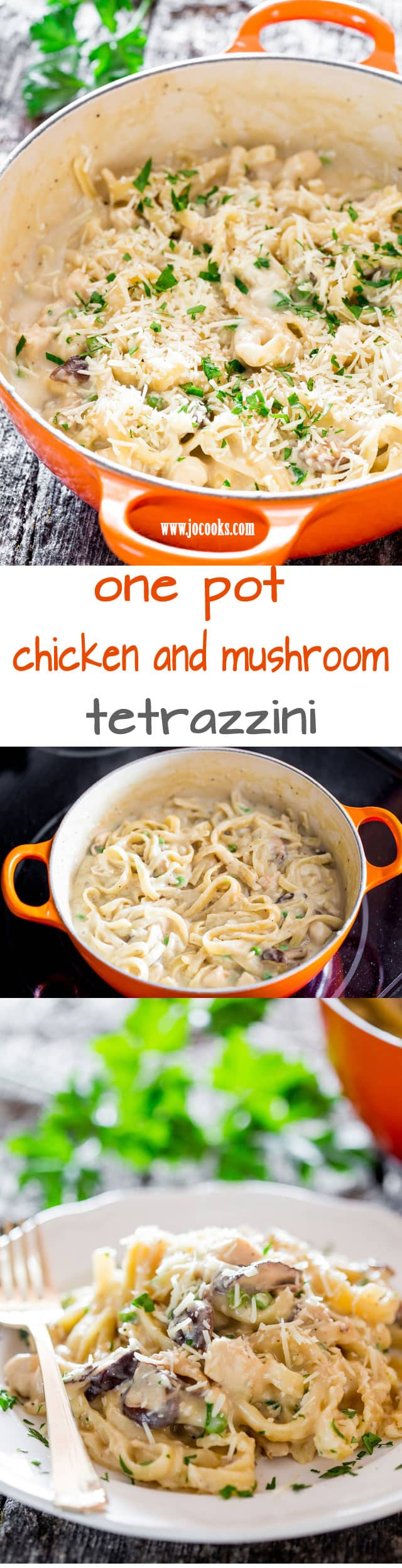 One Pot Chicken and Mushroom Tetrazzini - a simple but creamy, rich and delicious pasta dish with chicken and mushrooms ready in 35 minutes. Perfect for busy weeknights.  #tetrazzini #onepot