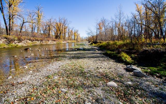 fish-creek-mia-1