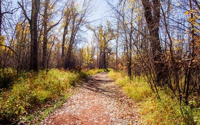 fish-creek-path-1