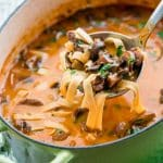 side view shot of a ladle taking a scoop of beef stroganoff from a pot