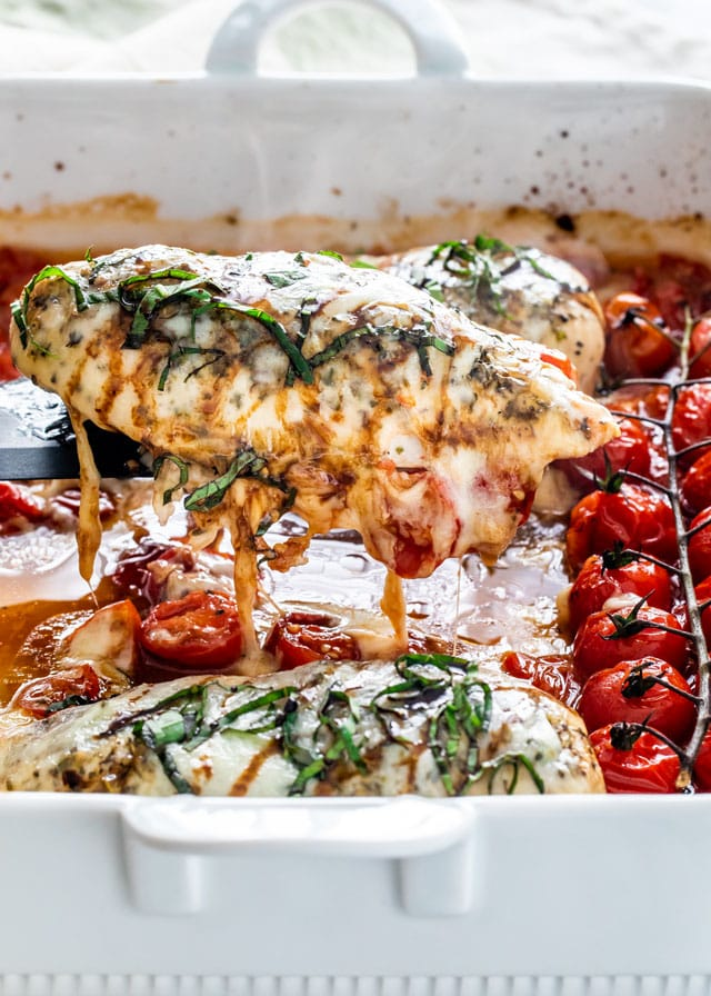 Caprese Chicken on a spatula