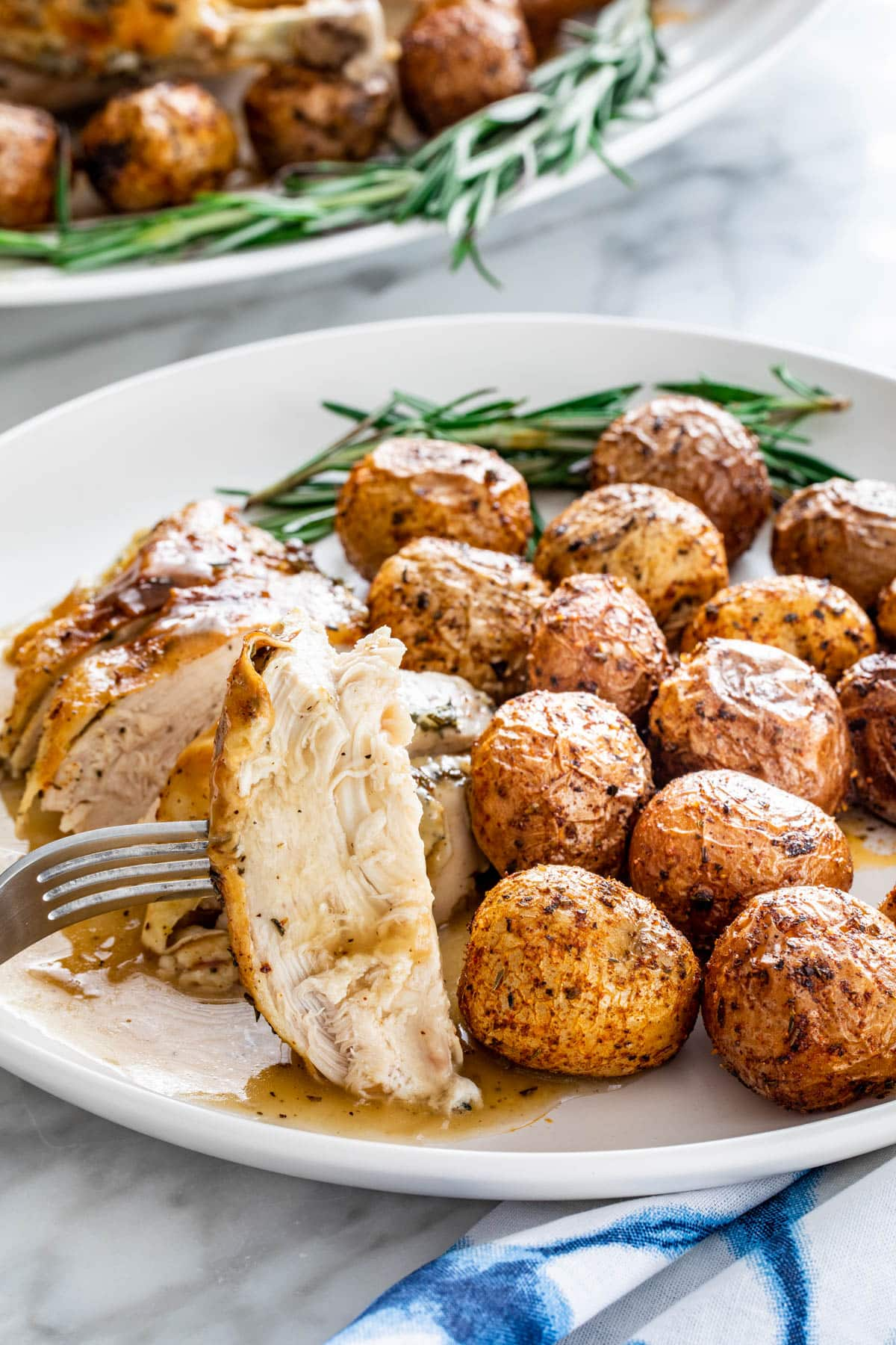 a white plate with sliced roasted chicken breast and roasted potatoes