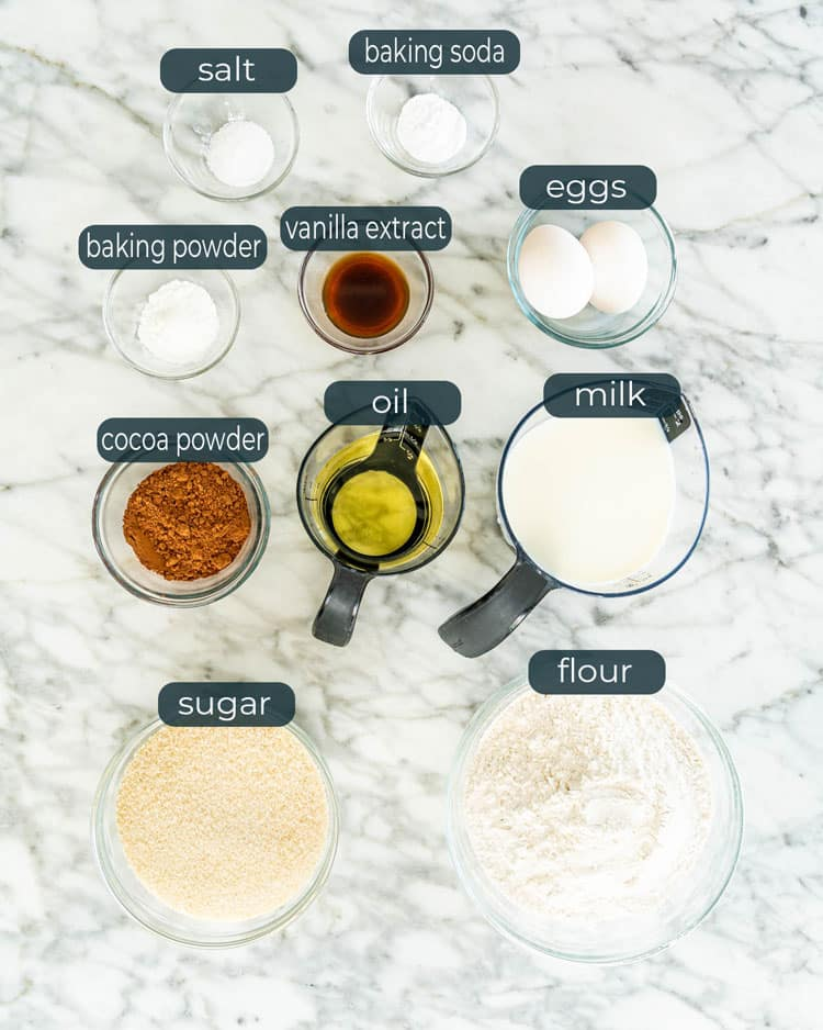 overhead shot of ingredients needed to make zebra cake