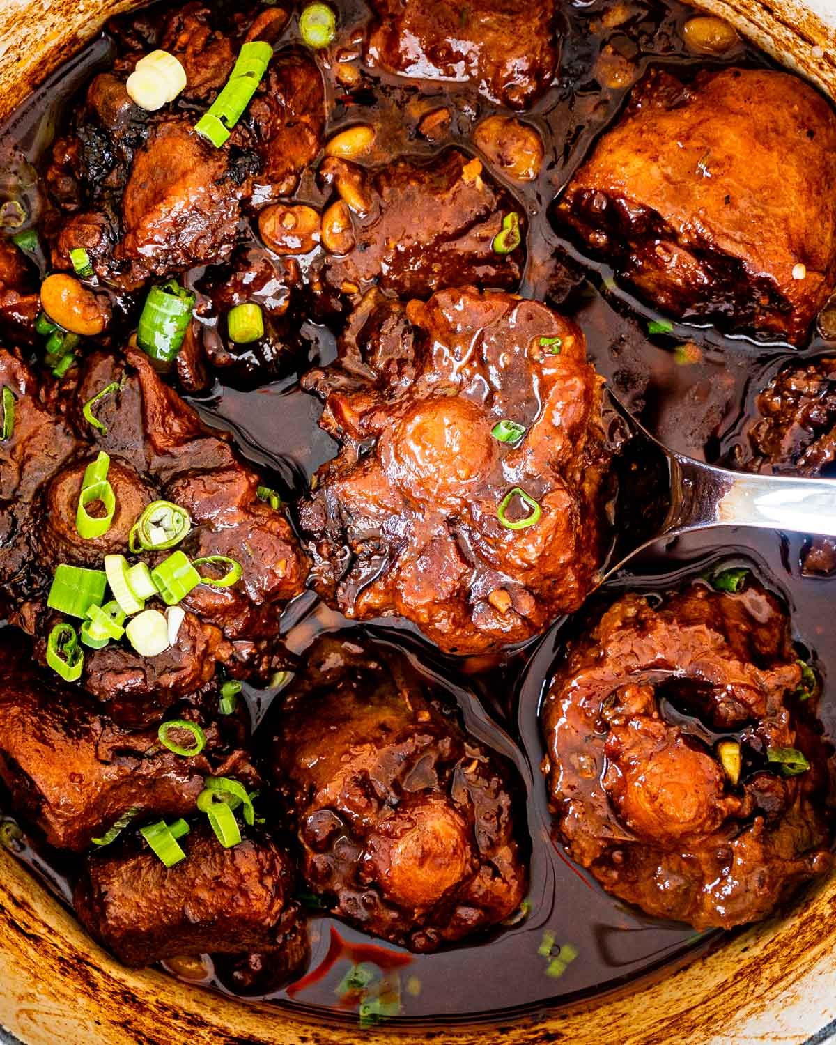 overhead shot of oxtail stew in a dutch oven garnished with green onions