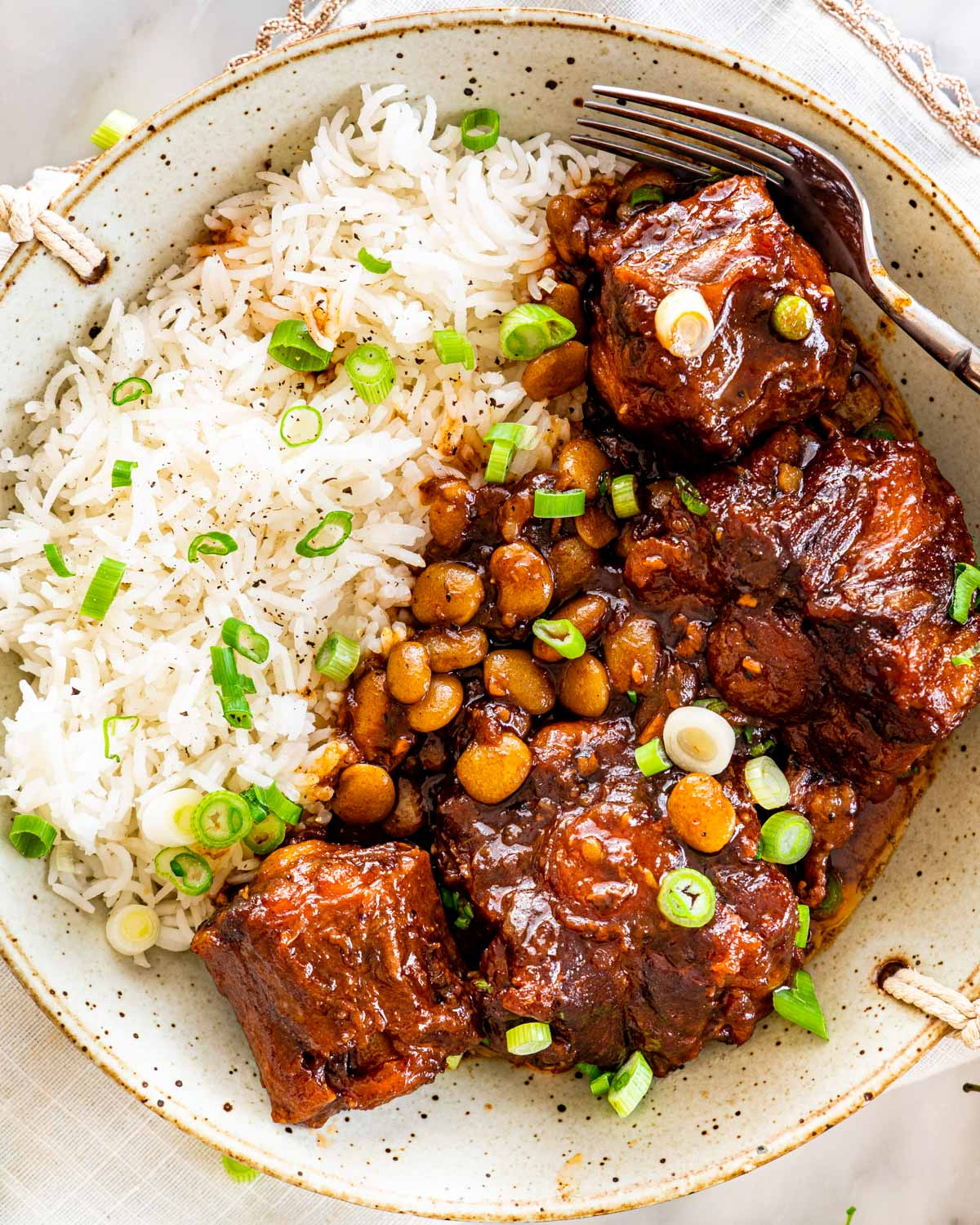 overhead shot of oxtail stew with rice on a plate garnished with green onions