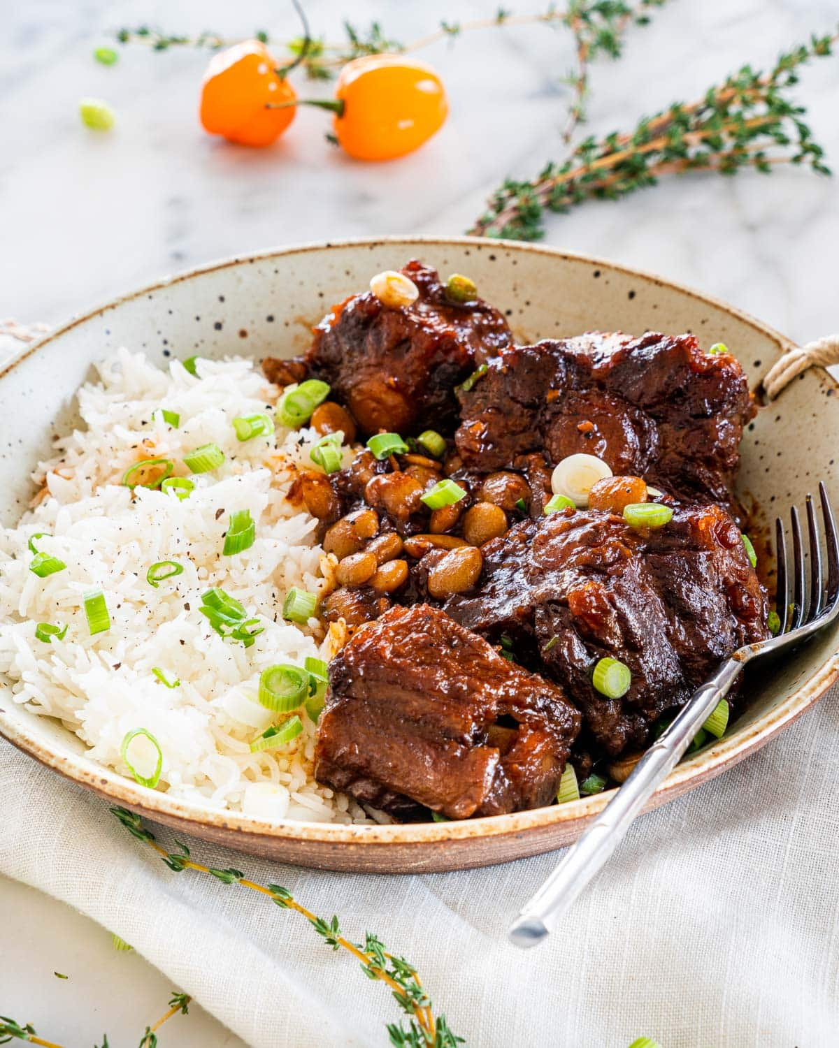 oxtail stew with rice in a plate garnished with green onions
