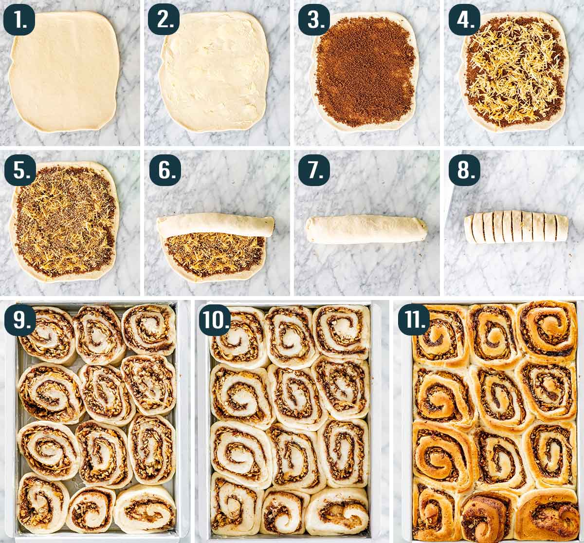 process shots showing how to roll and fill apple pecan cinnamon rolls, cut them into rolls and bake