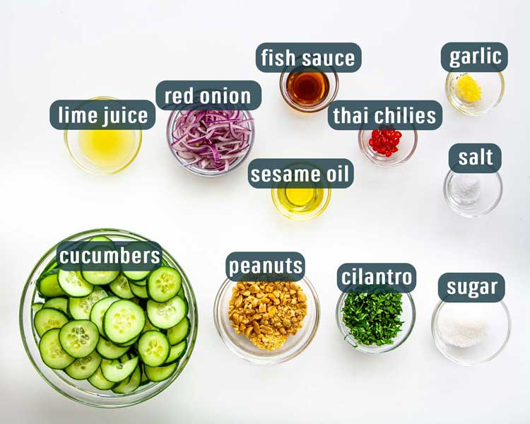 overhead shot of all the ingredients needed to make thai cucumber salad